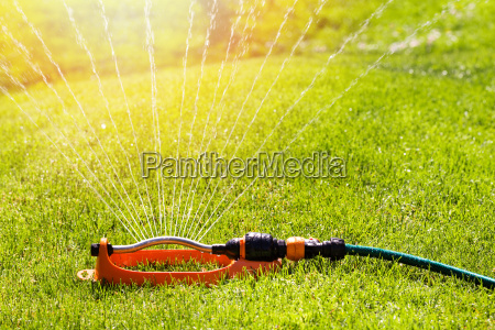 lawn sprinkler spaying water over green