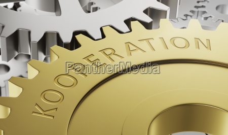 gears cooperation