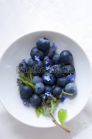 blueberries with forget me not in