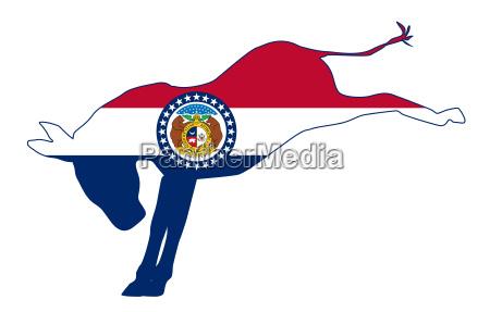 missouri democrat donkey flag