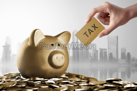 piggy bank with tax card sign