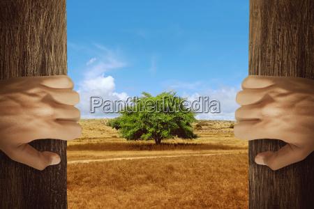 two hands opening wooden door with