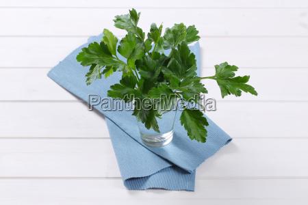 fresh parsley leaves
