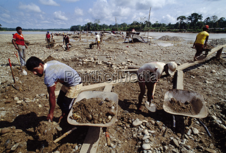 gold miners working panning in the