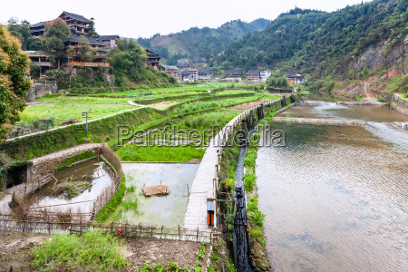 irrigation canal and rice paddies in