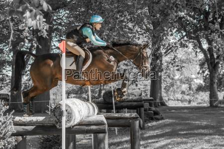 houghton international horse trials chloe lynn