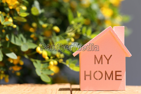 miniature model of house with flower