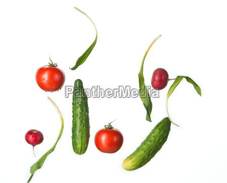 the fresh tomatos cucumbers radish in