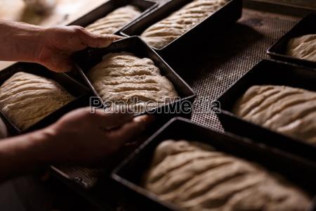 organic bread self baking