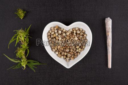 healthy marijuana medicine