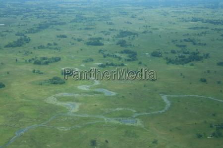 african savannah summer pictrures wild safari