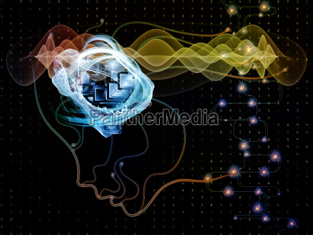 paradigm of machine consciousness