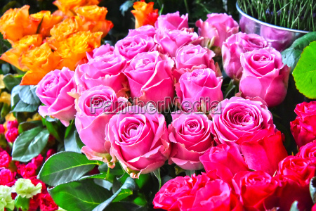 roses in flower shop