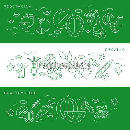 digital vector green and white vegetable