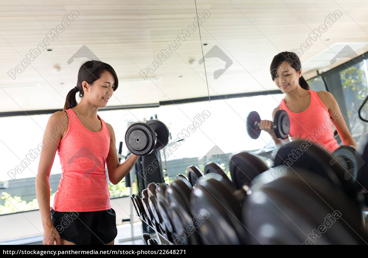 young, woman, weight, training - 22648271
