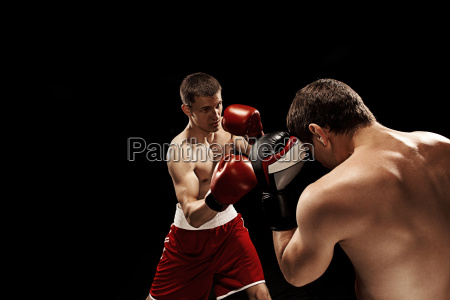 two, professional, boxer, boxing, on, black - 22663655