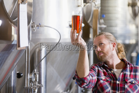 male brewery worker quality checking beer