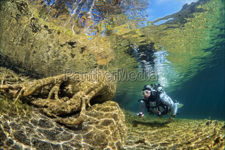 austria tyrol lake fernsteinsee tree under