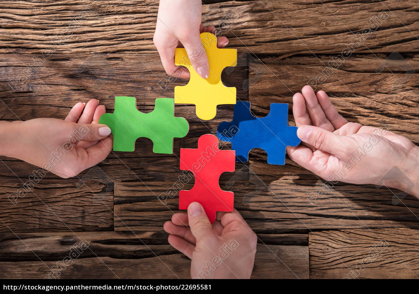hands, holding, jigsaw, puzzle - 22695581
