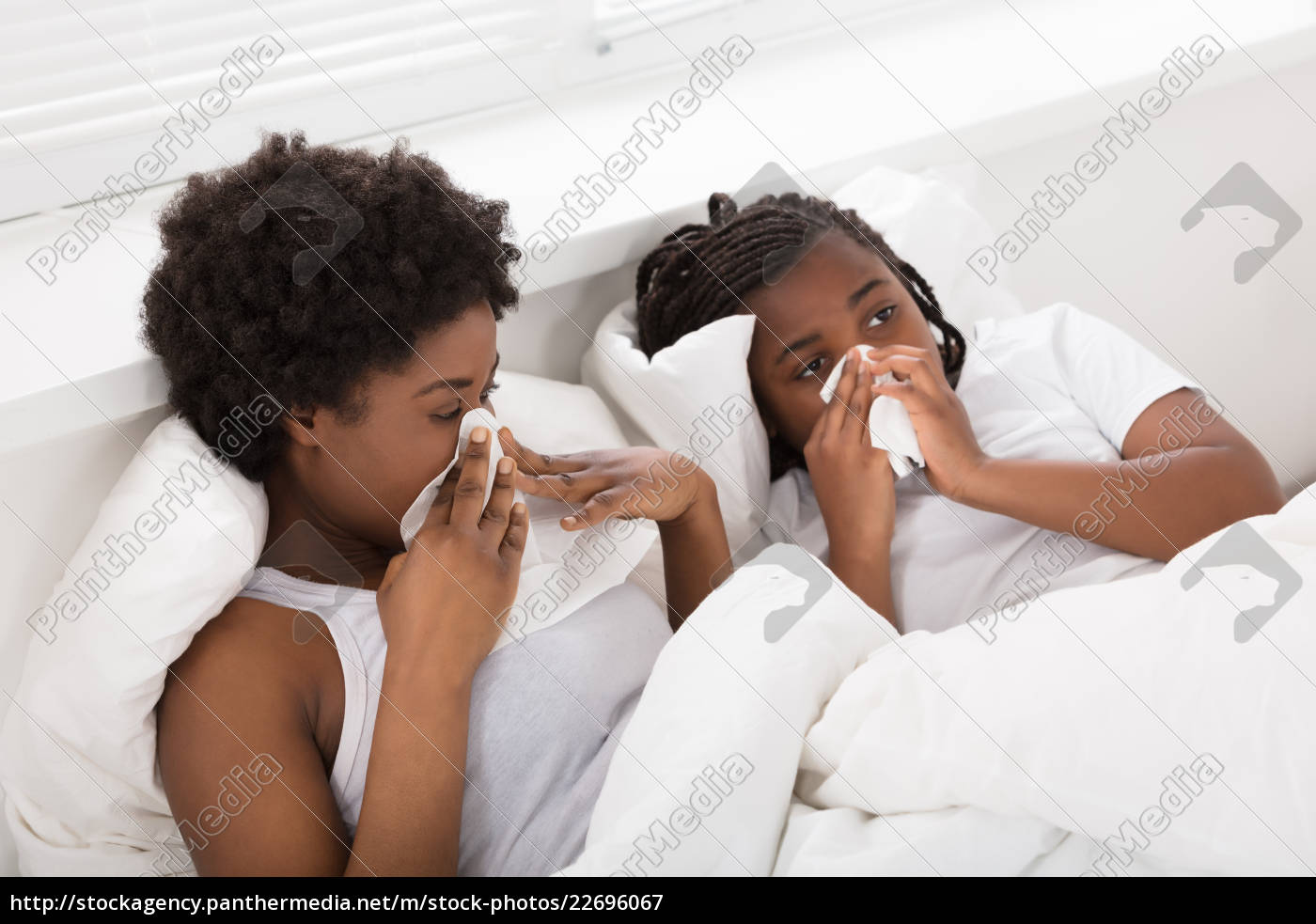 mother, and, daughter, sneezing, in, tissues - 22696067