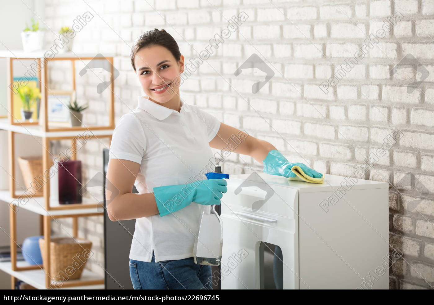 young, woman, cleaning, the, cabinet - 22696745