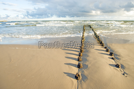 baltic sea beach with groynes