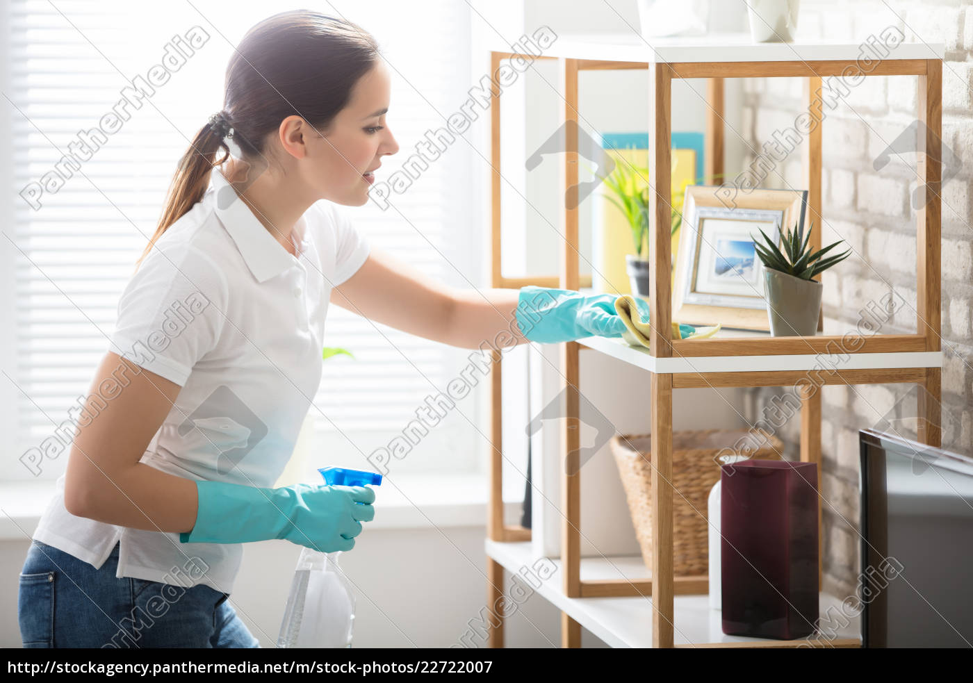 young, woman, cleaning, the, shelf, in - 22722007