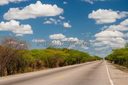 solitary straight road at la guajira