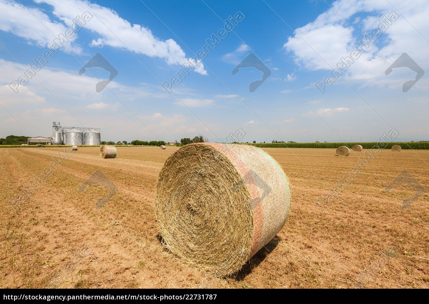 hay, bales, in, the, field, , on - 22731787