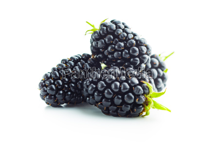 tasty ripe blackberry