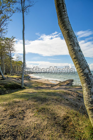 beach of the baltic sea in