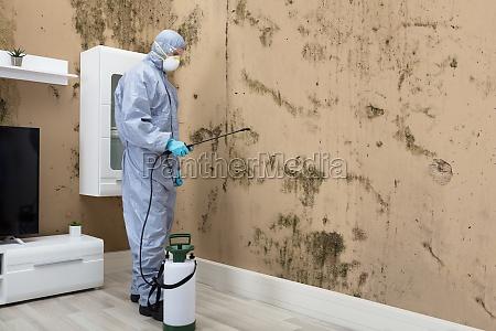 pest control worker spraying pesticide on