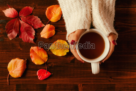 woman hands holding teacup seen from
