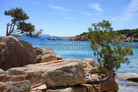 quite cove on the costa smeralda