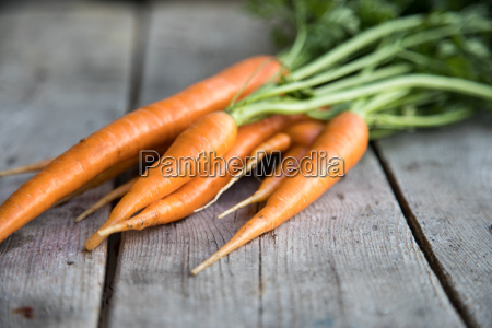 fresh carrots bunch on wood bunch