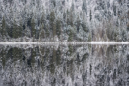 winter, landscape, in, bavaria, , arbersee - 22935285