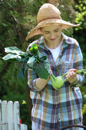 kohlrabi female gardener collects spring vegetables