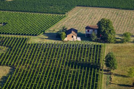 vinhas de cahorslotquercyfrancaeuropa