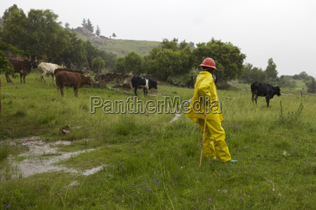 a farmer wearing a yellow raincoat