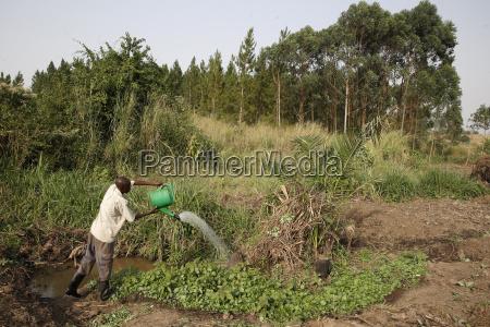 farmer apollo byarunga received two loans