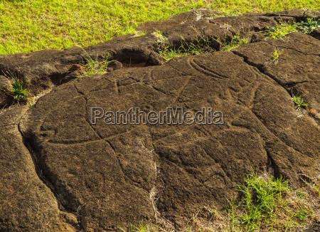 petroglyphs in papa vaka rapa nui