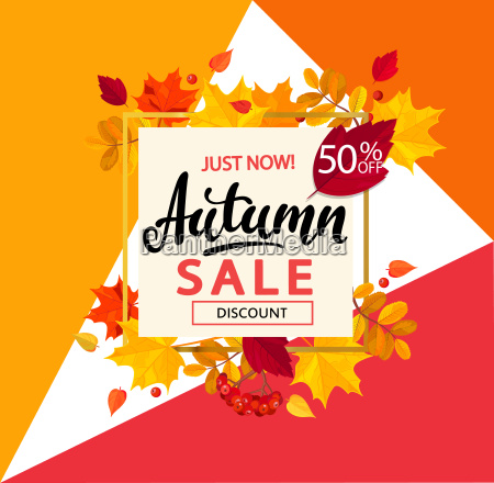 bright banner for autumn sale in