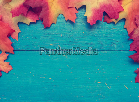 blue wood with red leaves