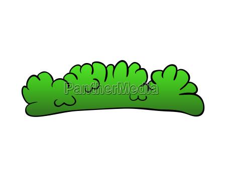 bush cartoon vector symbol icon design