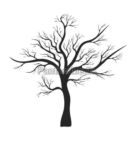 bare tree silhouette vector symbol icon