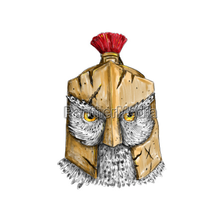 owl wearing spartan helmet tattoo