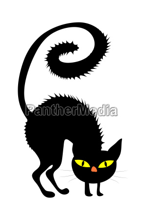 halloween creepy scary witches cat vector