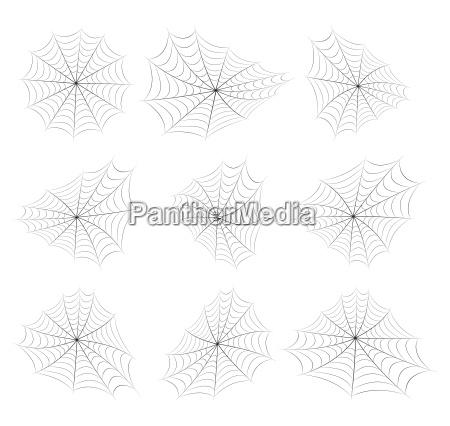 halloween spiderweb vector symbol icon design