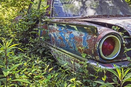 usa rural georgia abandoned car overgrown