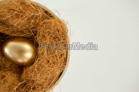 golden egg in nest against white